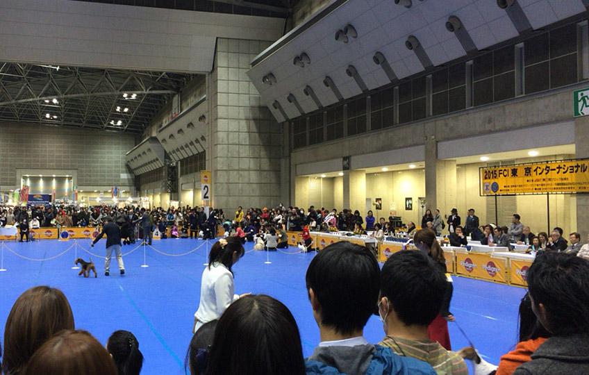 東京インターナショナルドッグショー2015