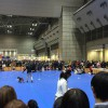 東京インターナショナルドッグショー